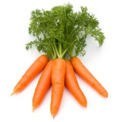 opoa marsia carote
